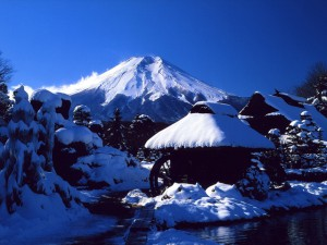 富士山(忍野)