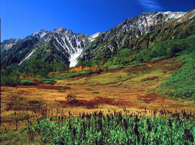 白馬(栂池より見る白馬大雪渓)