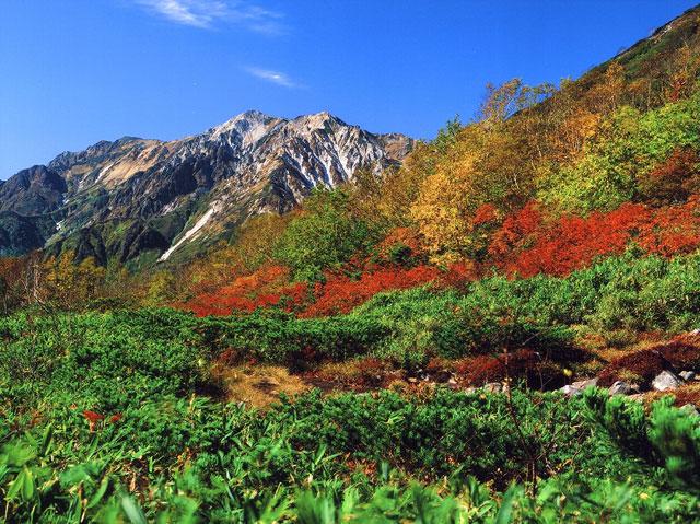 天狗原から見る杓子岳